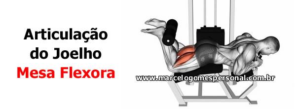 Cadeira Extensora e Mesa Flexora - Análise Cinesiológica
